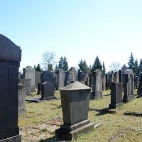 judenfriedhof bamberg 5 280x280 - Judenfriedhof