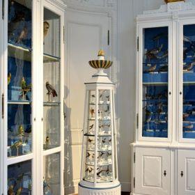 naturkundemuseum bamberg 2 280x280 - Naturkundemuseum Bamberg