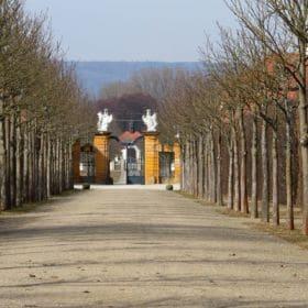 schloss seehof 02 280x280 - Schloss Seehof